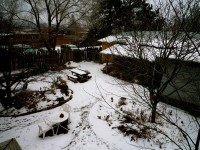 Yard From Above,Winter, 2009