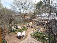 Yard From Above,Spring 1, 2010